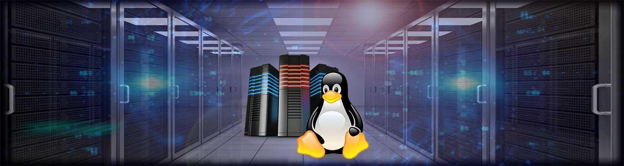 هاست, هاست لینوکس, هاست لینوکس ایران, هاست وردپرس, هاست لینوکس آلمان, سرور, رویا وردپرس, drwpress