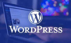 وزدپرس, وردپرس چیست, رویا وردپرس, معرفی وردپرس, wordpress, drwpress