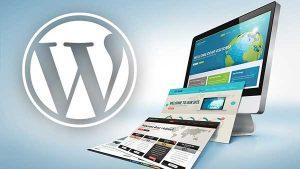 آموزش طراحی سایت با وردپرس,آموزش صفر تا صد طراحی سایت با وردپرس,وردپرس چیست,رویا وردپرس,طراحی سایت با وردپرس
